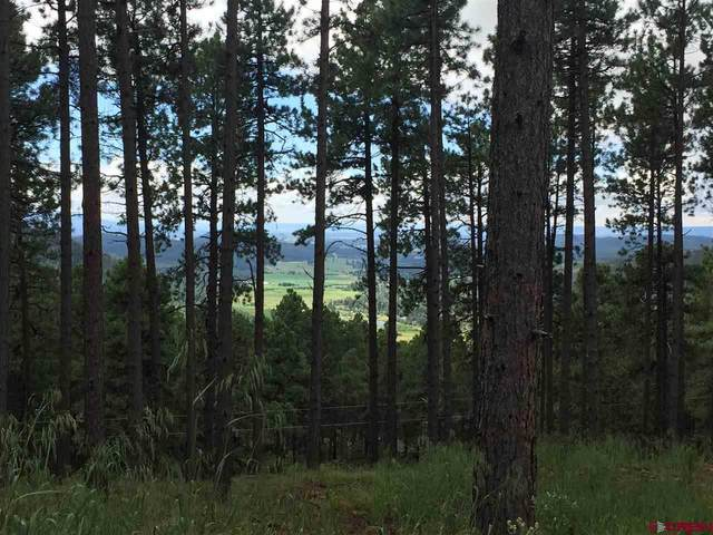 38 Forest Lane, Bayfield, CO 81122 (MLS #772547) :: The Dawn Howe Group | Keller Williams Colorado West Realty