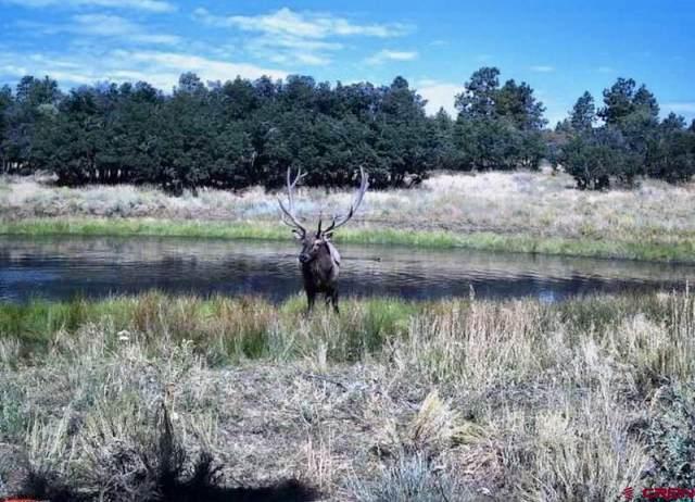 CR 136 & CR 141 Nw Intersection, Hesperus, CO 81301 (MLS #772574) :: Durango Mountain Realty