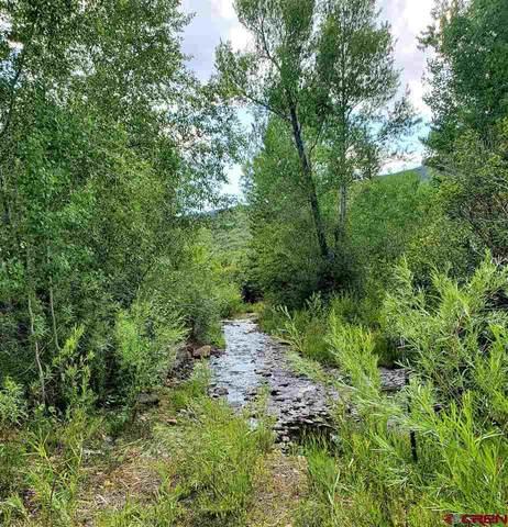 TBD Aspen Hills Road, Cedaredge, CO 81413 (MLS #772663) :: The Dawn Howe Group | Keller Williams Colorado West Realty