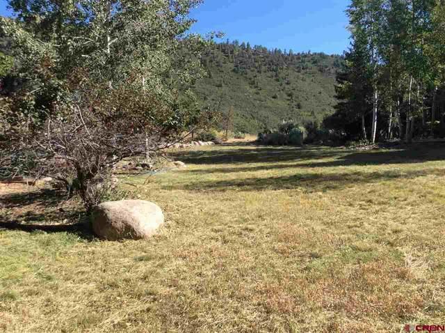 328 Hillcrest Dr Drive, Durango, CO 81301 (MLS #772719) :: Durango Mountain Realty