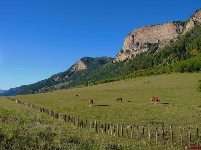 TBD N Us Hwy 550, Durango, CO 81301 (MLS #772743) :: The Dawn Howe Group   Keller Williams Colorado West Realty