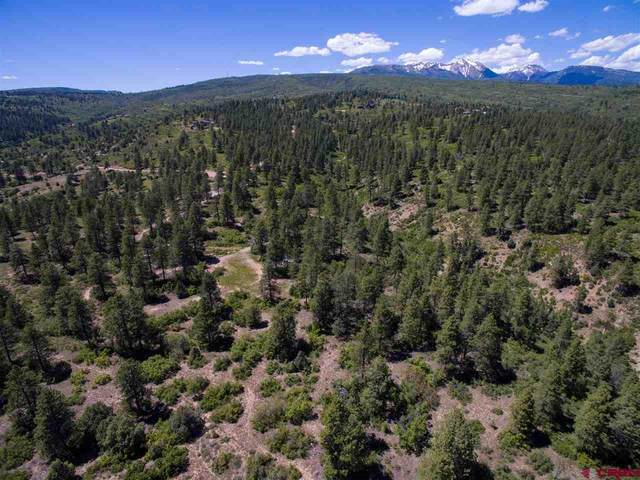 1102 Sheep Springs Road, Durango, CO 81301 (MLS #772744) :: Durango Mountain Realty