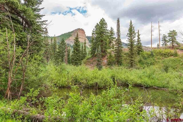 46773 N Highway 550, Durango, CO 81301 (MLS #772758) :: Durango Mountain Realty