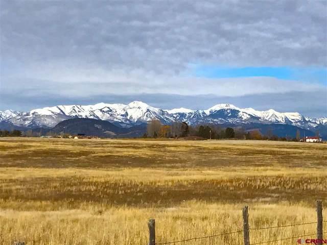 TBD Cr 302, Durango, CO 81303 (MLS #772797) :: Durango Mountain Realty