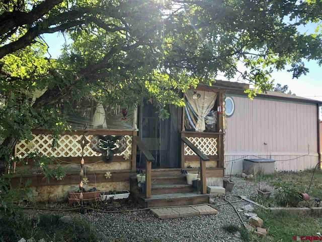 440 Cr 232 #5, Durango, CO 81303 (MLS #772802) :: Durango Mountain Realty