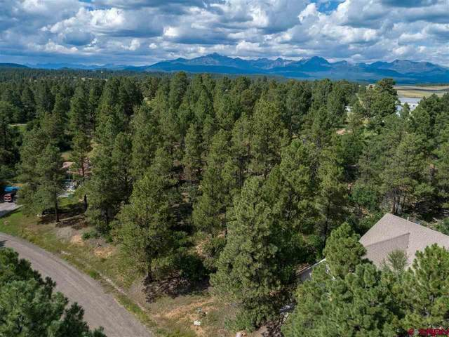 311 W Golf Place, Pagosa Springs, CO 81147 (MLS #772886) :: The Dawn Howe Group | Keller Williams Colorado West Realty