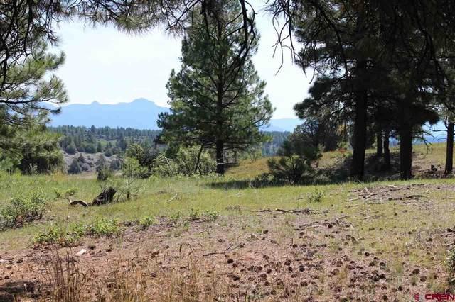 TBD Shooting Star Drive, Pagosa Springs, CO 81147 (MLS #772946) :: The Dawn Howe Group | Keller Williams Colorado West Realty