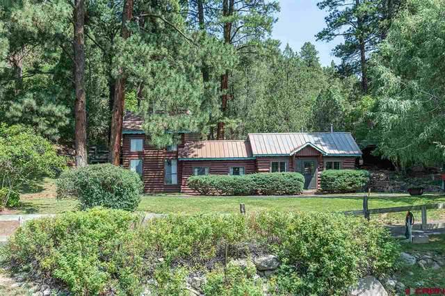 33177 Highway 550, Durango, CO 81301 (MLS #773123) :: Durango Mountain Realty