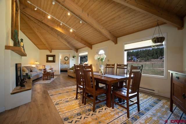 6520 Cr 240, Durango, CO 81301 (MLS #773144) :: Durango Mountain Realty
