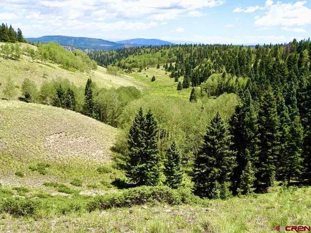 TBD Forest Service Road 87 Triangle Ranch, Tres Piedras, NM 87577 (MLS #773172) :: The Dawn Howe Group   Keller Williams Colorado West Realty