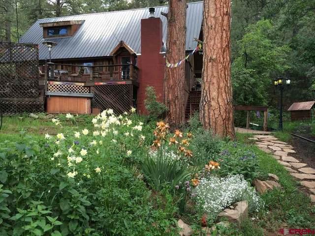 6867 Cr 203, Durango, CO 81301 (MLS #773199) :: Durango Mountain Realty