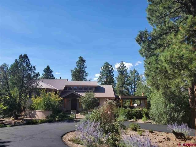 304 Peak Trail, Durango, CO 81303 (MLS #773211) :: Durango Mountain Realty