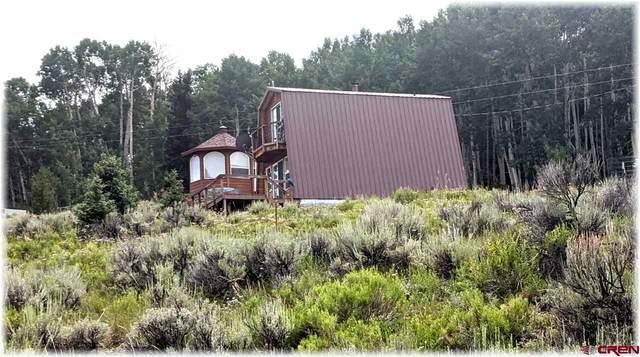 1379 County Road 858, Cimarron, CO 81220 (MLS #773249) :: The Dawn Howe Group | Keller Williams Colorado West Realty