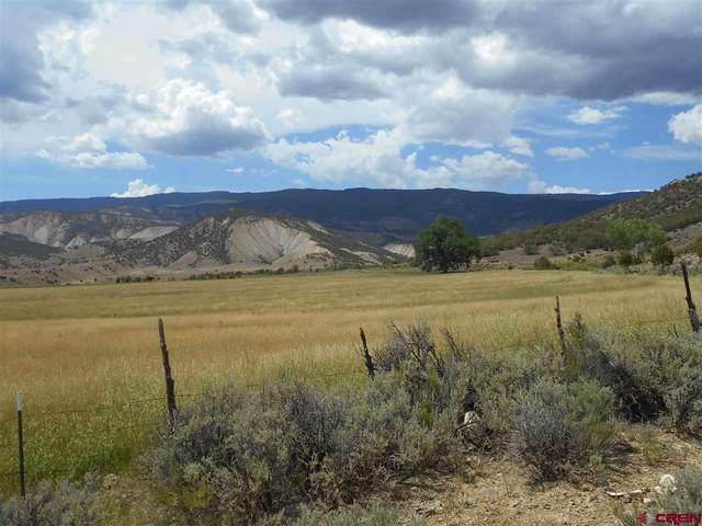 18069 Oak Creek Road, Eckert, CO 81418 (MLS #773255) :: The Dawn Howe Group | Keller Williams Colorado West Realty