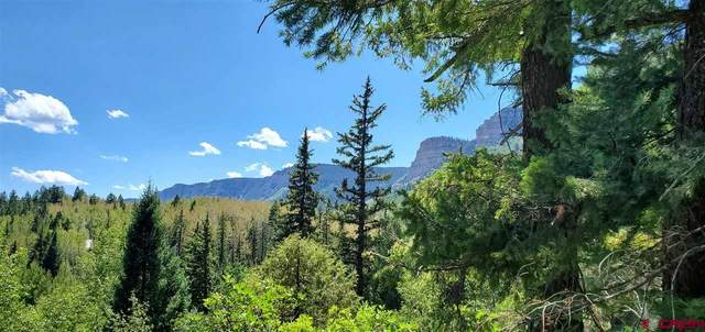 TBD Elk Way Way, Durango, CO 81301 (MLS #773329) :: Durango Mountain Realty
