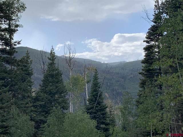 TBD Lot 11 Grizzly Lane, Durango, CO 81301 (MLS #773378) :: Durango Mountain Realty