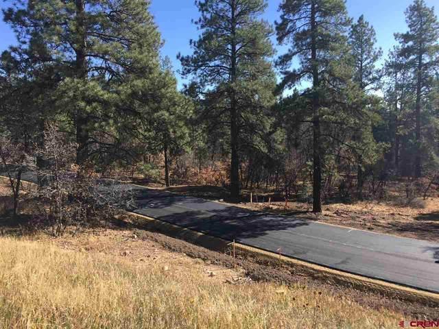 37 Terra Blue (Lot 21) Way, Durango, CO 81301 (MLS #773436) :: Durango Mountain Realty