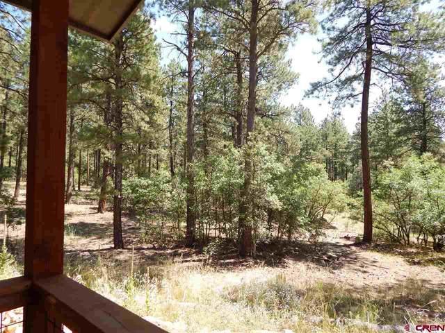 57 & 65 Terra Blue Way (Lots 26, 27), Durango, CO 81301 (MLS #773437) :: Durango Mountain Realty