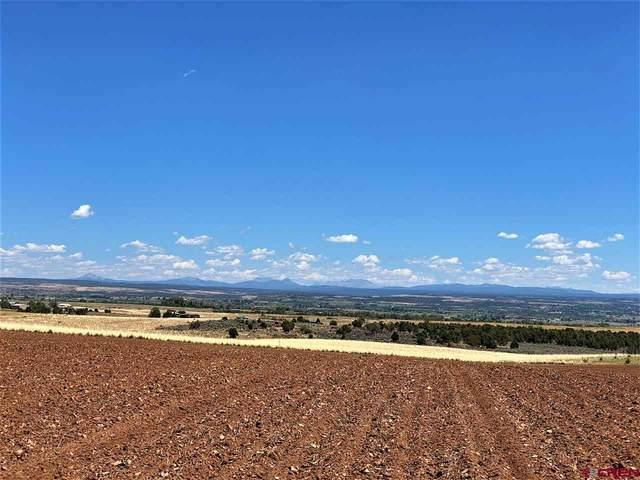 18285 Road P.2, Cortez, CO 81321 (MLS #773489) :: The Dawn Howe Group | Keller Williams Colorado West Realty