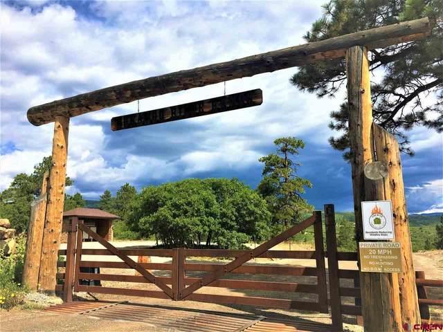 1498 Durango Ridge Road, Durango, CO 81301 (MLS #773694) :: Durango Mountain Realty