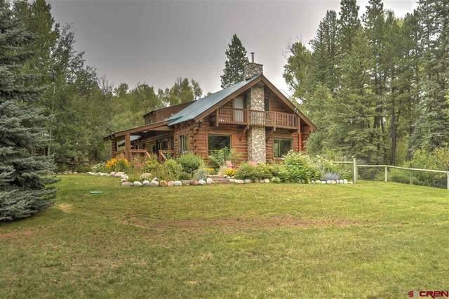 12208 County Road 240 1 El Gato, Durango, CO 81301 (MLS #773738) :: Durango Mountain Realty
