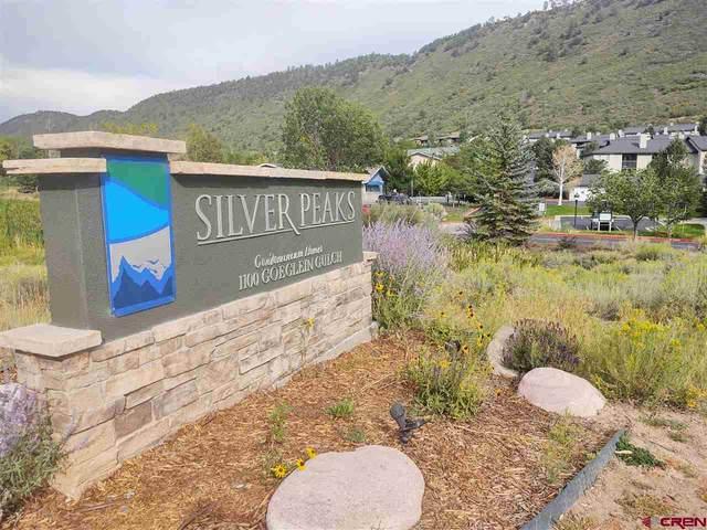 1100 Goeglein Gulch Road #131, Durango, CO 81301 (MLS #773870) :: Durango Mountain Realty