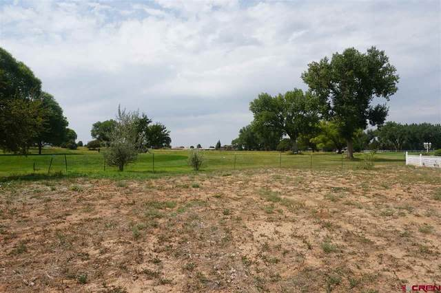 2517 Golf Course Ln, Cortez, CO 81321 (MLS #773940) :: The Dawn Howe Group   Keller Williams Colorado West Realty