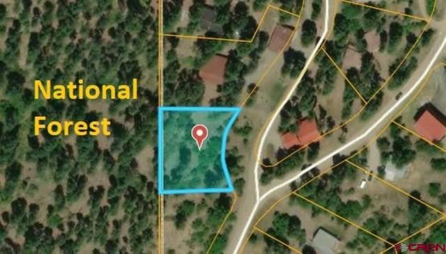 14 Elk Ridge Place, Pagosa Springs, CO 81147 (MLS #774028) :: The Dawn Howe Group | Keller Williams Colorado West Realty