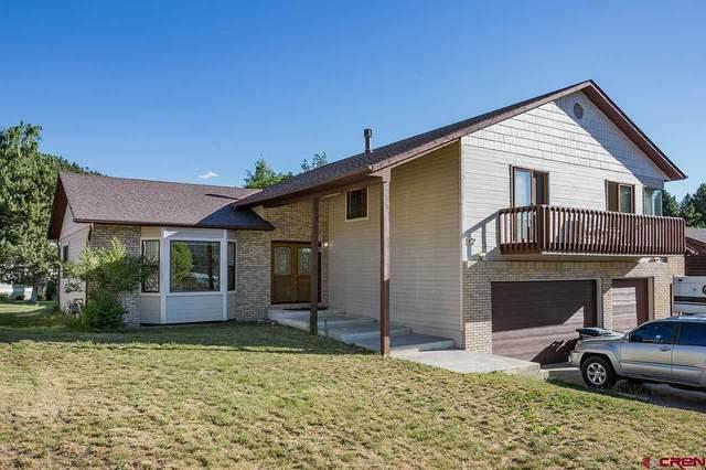 57 Silver Mountain Lane, Durango, CO 81301 (MLS #774088) :: Durango Mountain Realty