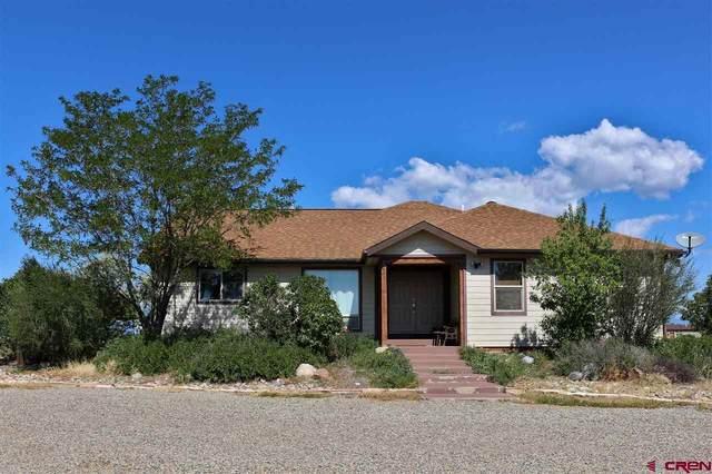 380 Quarter Horse Road, Durango, CO 81301 (MLS #774143) :: Durango Mountain Realty