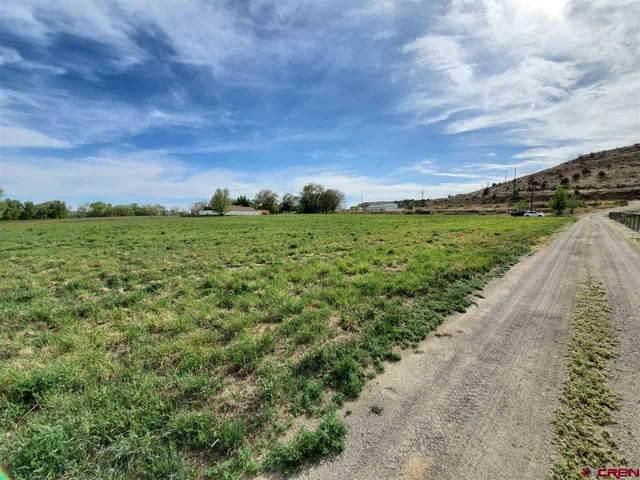 181 Road 2900, Aztec, CO 87410 (MLS #774225) :: The Dawn Howe Group   Keller Williams Colorado West Realty