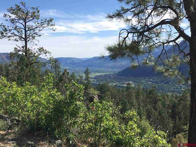 TBD Celadon Drive East, Durango, CO 81301 (MLS #774253) :: Durango Mountain Realty