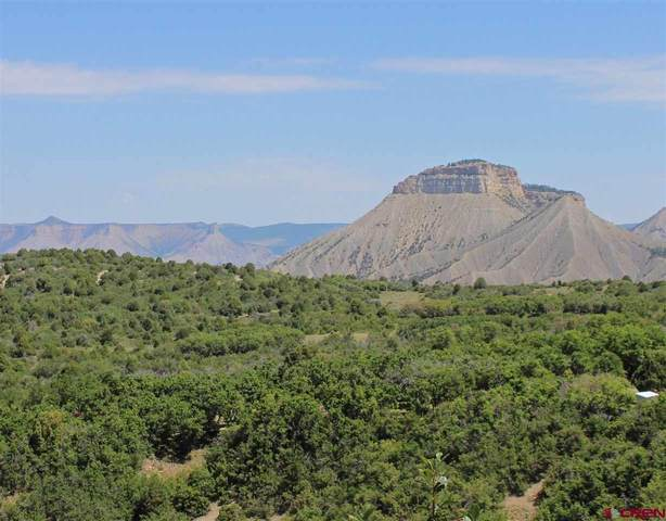 TBD Road 29 Lot 7, Cahone, CO 81324 (MLS #774314) :: The Dawn Howe Group | Keller Williams Colorado West Realty