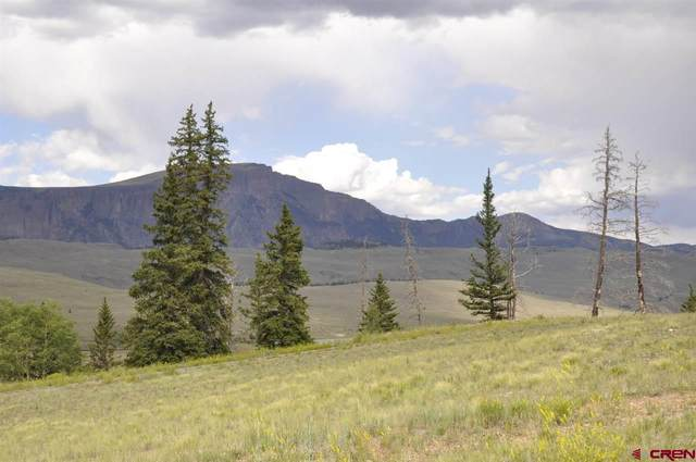 320 Crooked Creek Run, Creede, CO 81130 (MLS #774439) :: The Dawn Howe Group | Keller Williams Colorado West Realty