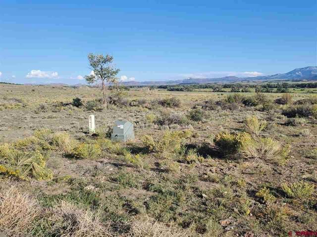 576 W Pfieffer Loop, South Fork, CO 81154 (MLS #774498) :: The Dawn Howe Group | Keller Williams Colorado West Realty
