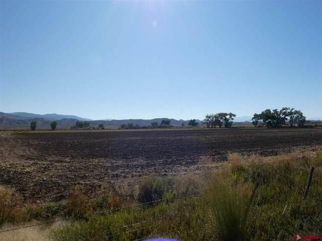 Lot 2 6400 Road, Montrose, CO 81403 (MLS #774499) :: The Dawn Howe Group   Keller Williams Colorado West Realty