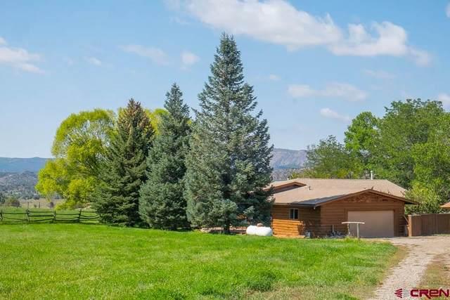1076 Cr 214, Durango, CO 81303 (MLS #774511) :: Durango Mountain Realty