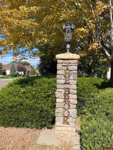 TBD Pioneer Road, Montrose, CO 81401 (MLS #774583) :: The Dawn Howe Group | Keller Williams Colorado West Realty