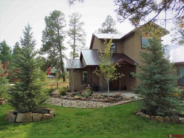 65 Pines Drive, Pagosa Springs, CO 81147 (MLS #774649) :: The Dawn Howe Group | Keller Williams Colorado West Realty