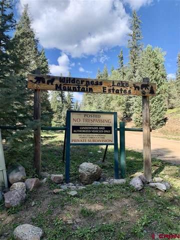 331 Wilderness Drive, Durango, CO 81301 (MLS #774715) :: Durango Mountain Realty
