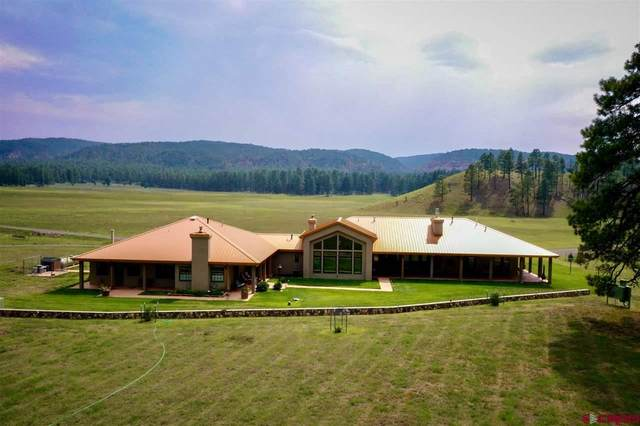 66 Elk Trail Twin Pines, Mimbres, NM 88049 (MLS #774775) :: The Dawn Howe Group   Keller Williams Colorado West Realty