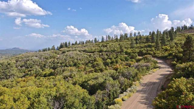 Lot # 37 W Durango Ridge Road, Durango, CO 81301 (MLS #774820) :: Durango Mountain Realty