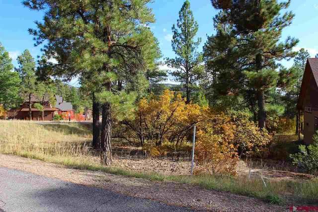 15 Mill Creek Court, Durango, CO 81301 (MLS #774822) :: Durango Mountain Realty