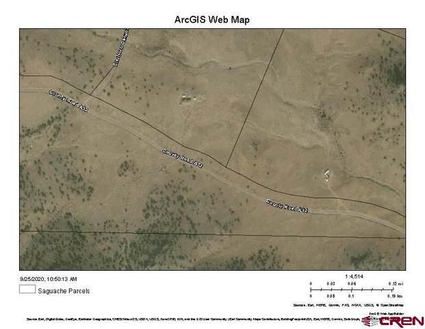 35606 Co Road A 32, Del Norte, CO 81132 (MLS #774918) :: The Dawn Howe Group | Keller Williams Colorado West Realty