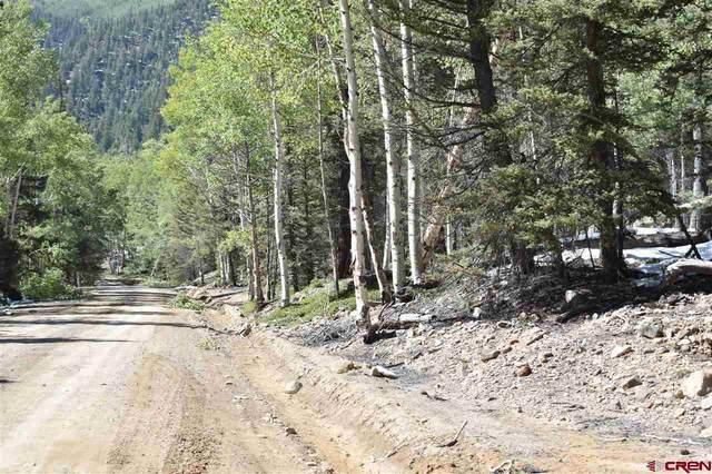 TBD Fs 250, Jasper, CO 81144 (MLS #774924) :: The Dawn Howe Group | Keller Williams Colorado West Realty