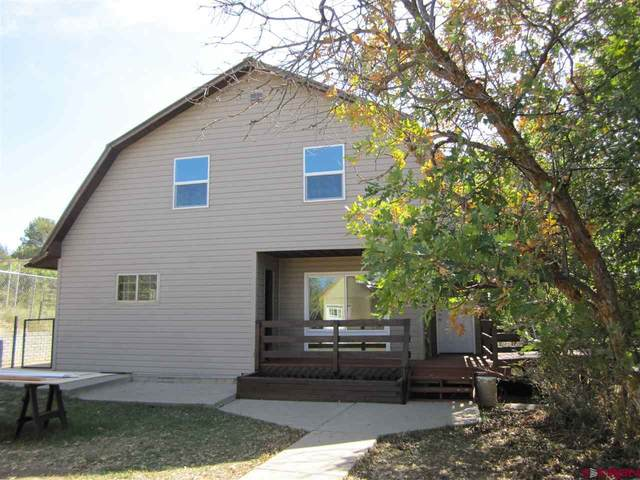 1788 Cr 223, Durango, CO 81301 (MLS #774940) :: The Dawn Howe Group | Keller Williams Colorado West Realty