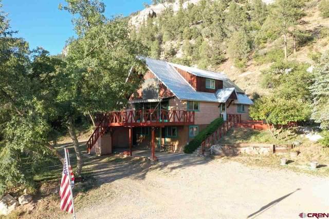 1670 Cr 250, Durango, CO 81301 (MLS #774941) :: The Dawn Howe Group | Keller Williams Colorado West Realty