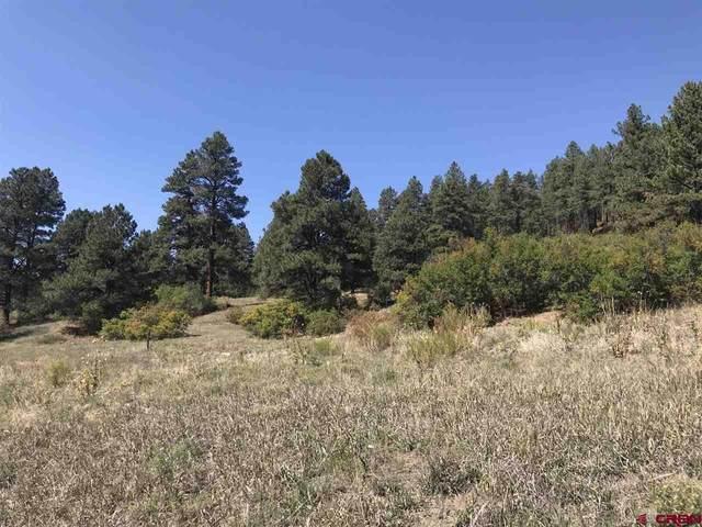2221 Bear Creek Road, Bayfield, CO 81122 (MLS #774943) :: The Dawn Howe Group | Keller Williams Colorado West Realty