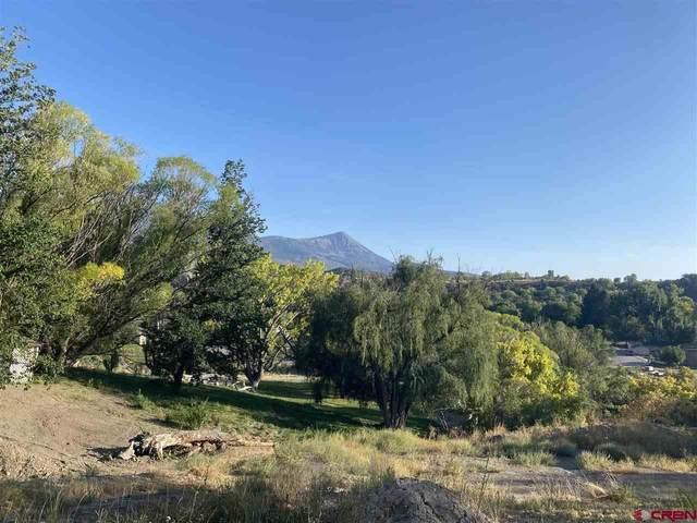 33 Box Elder, Paonia, CO 81428 (MLS #774952) :: The Dawn Howe Group | Keller Williams Colorado West Realty