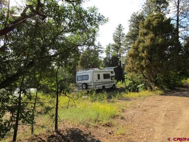 1853 Crooked Road, Pagosa Springs, CO 81147 (MLS #774959) :: The Dawn Howe Group | Keller Williams Colorado West Realty